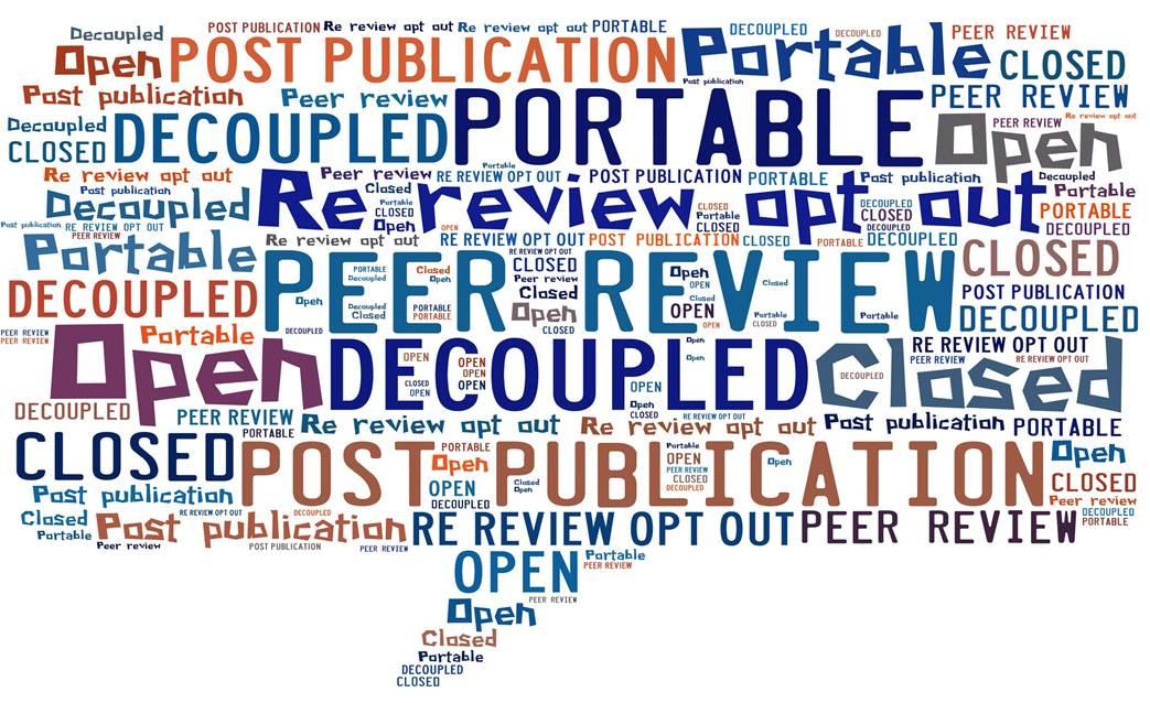 Peer review wordle