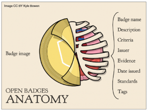 badge_anatomy