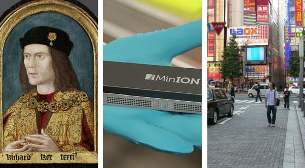 Richard III, MinION sequencer, Japan