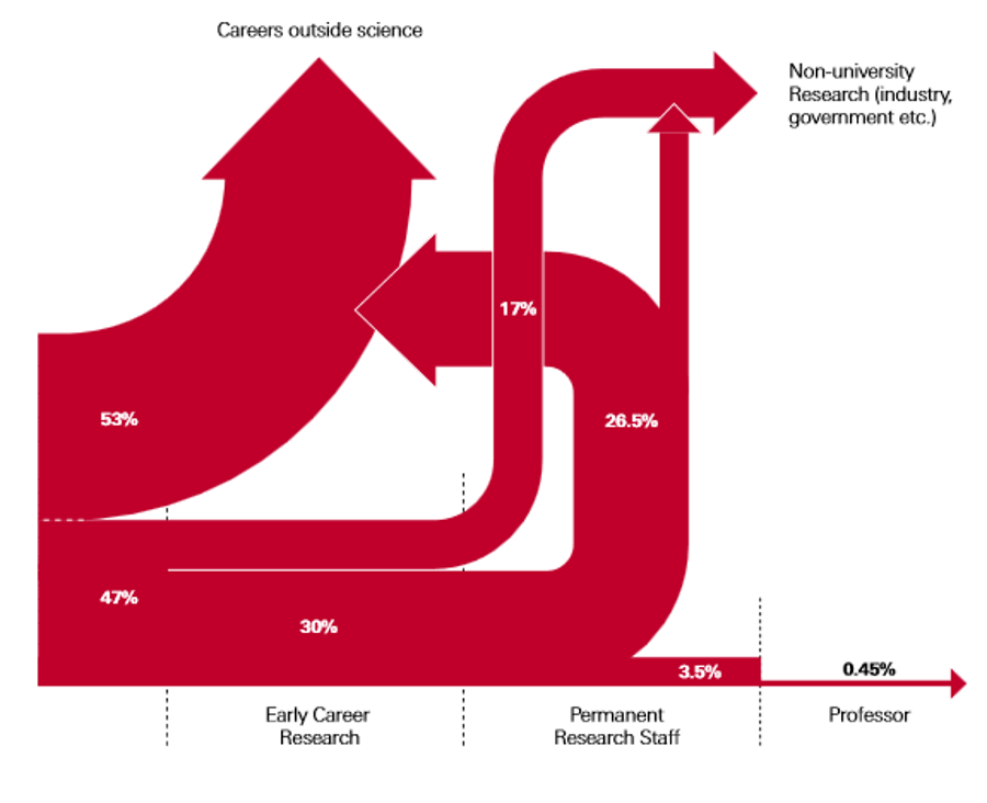 Data from the Royal Society policy document 'The Scientific Century securing our future prosperity' (2010) reveals the journey from PhD to Professorship, with many PhDs and post-docs opting for a career outside science.