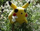 pokemon-1557682_640-300x225