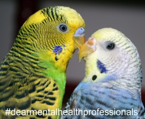 two birds (PuppiesAreProzac, Flickr) modified