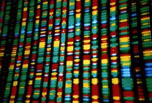 DNA representation (Andy Leppard, Flickr CC)