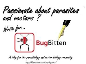 BugBitten powerpoint advert