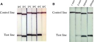 FL strips showing Dra1 LF-RPA amplicon detection at different reaction temperatures (a) and times (b)