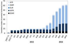 Cumulative number of countries, territories and areas by WHO region reporting mosquito-borne ZIKV transmission in years, 2007-2014, and monthly from 1 January 2015 to 11 May 2016. Source: https://www.who.int/emergencies/zika-virus/situation-report/en/
