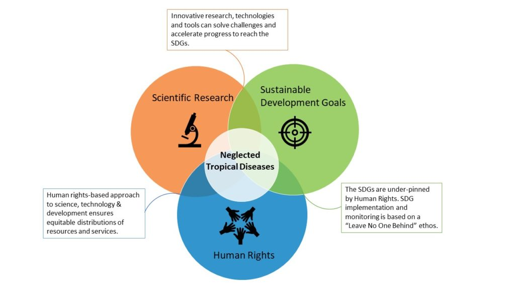 Neglected Tropical Diseases in the middle of a Venn diagram where Scientific Research, Sustainable Development Goals and Human Rights.