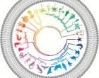 BMC Biol iconic image