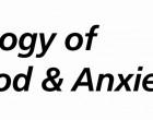 BMAD Logo (FINAL)