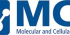 Molecular and Cellular Therapies