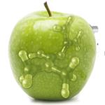 Applecells_2014_all-green_small1