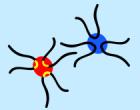 Transcription factories (from Cope et al.)