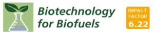 BfB IF logo