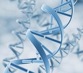 DNA strands_small