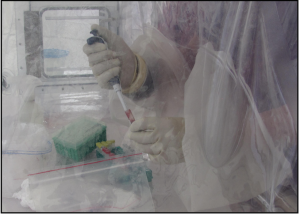 A lab worker inactivating patient samples