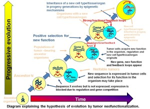 DiagramofHypothesis