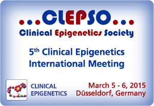 CLEPSO 2015 meeting