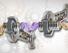 CRISPR-Cas9 editing of the genome