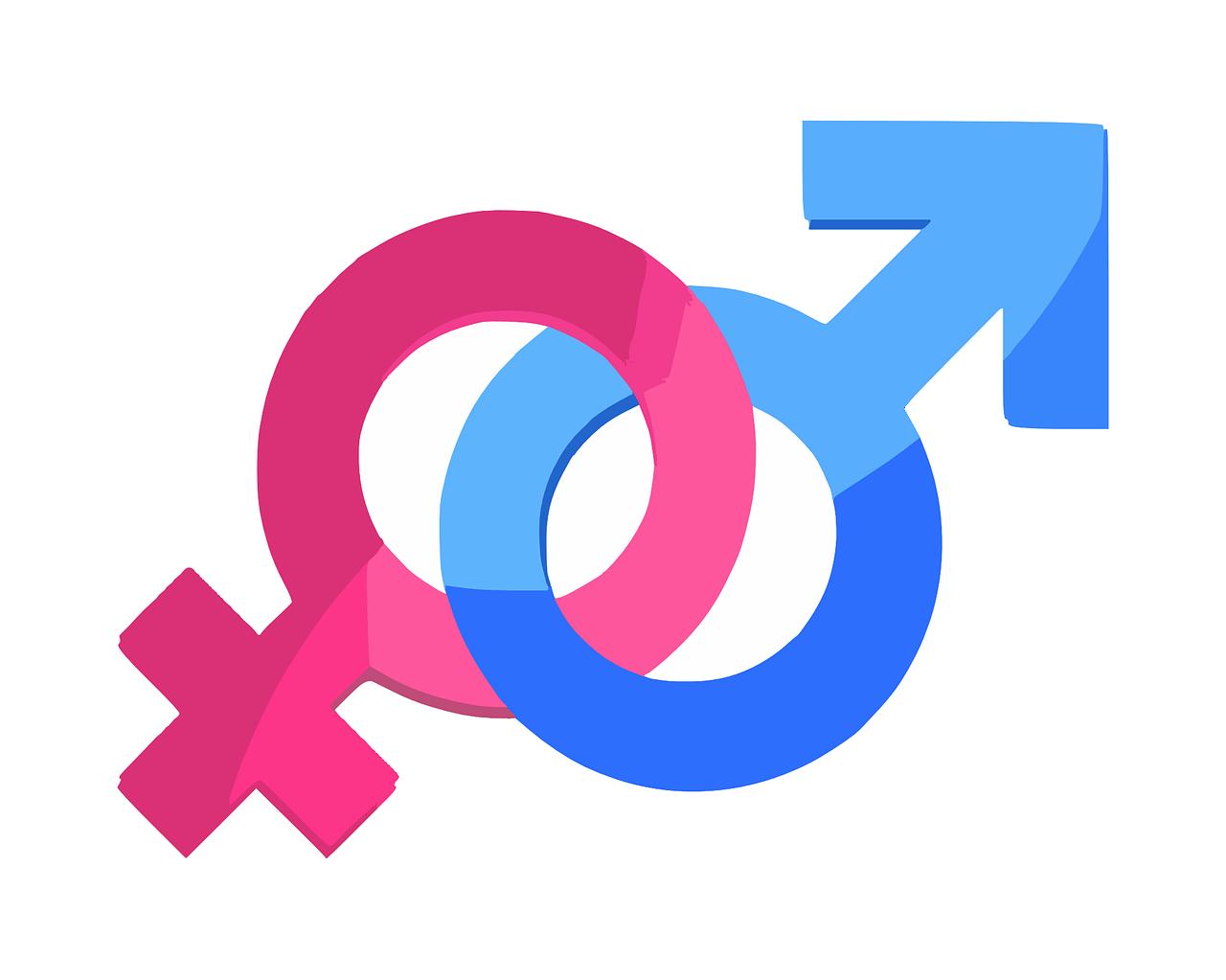gender-312411_1280