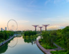 Supertree Grove in the Garden by the Bay in Singapore