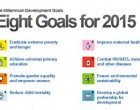Eight goals for 2015