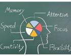 brain graph2
