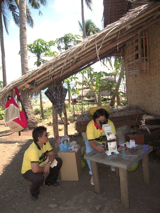 A microscopist in Palawan, the Philippines, examining a blood smear of a febrile patient in a remote rural village.