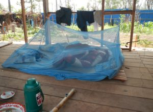 Mobile population often move with their families and exposure of infants and children to malaria vectors occur while in temporary housing as well as in forest and while accompanying their parents in forests and plantations.