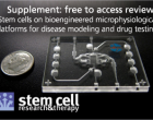 Stem cell supplement