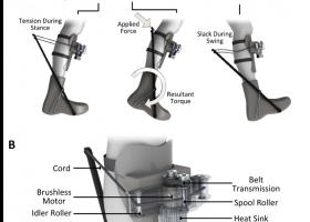 exoskeleton schematic