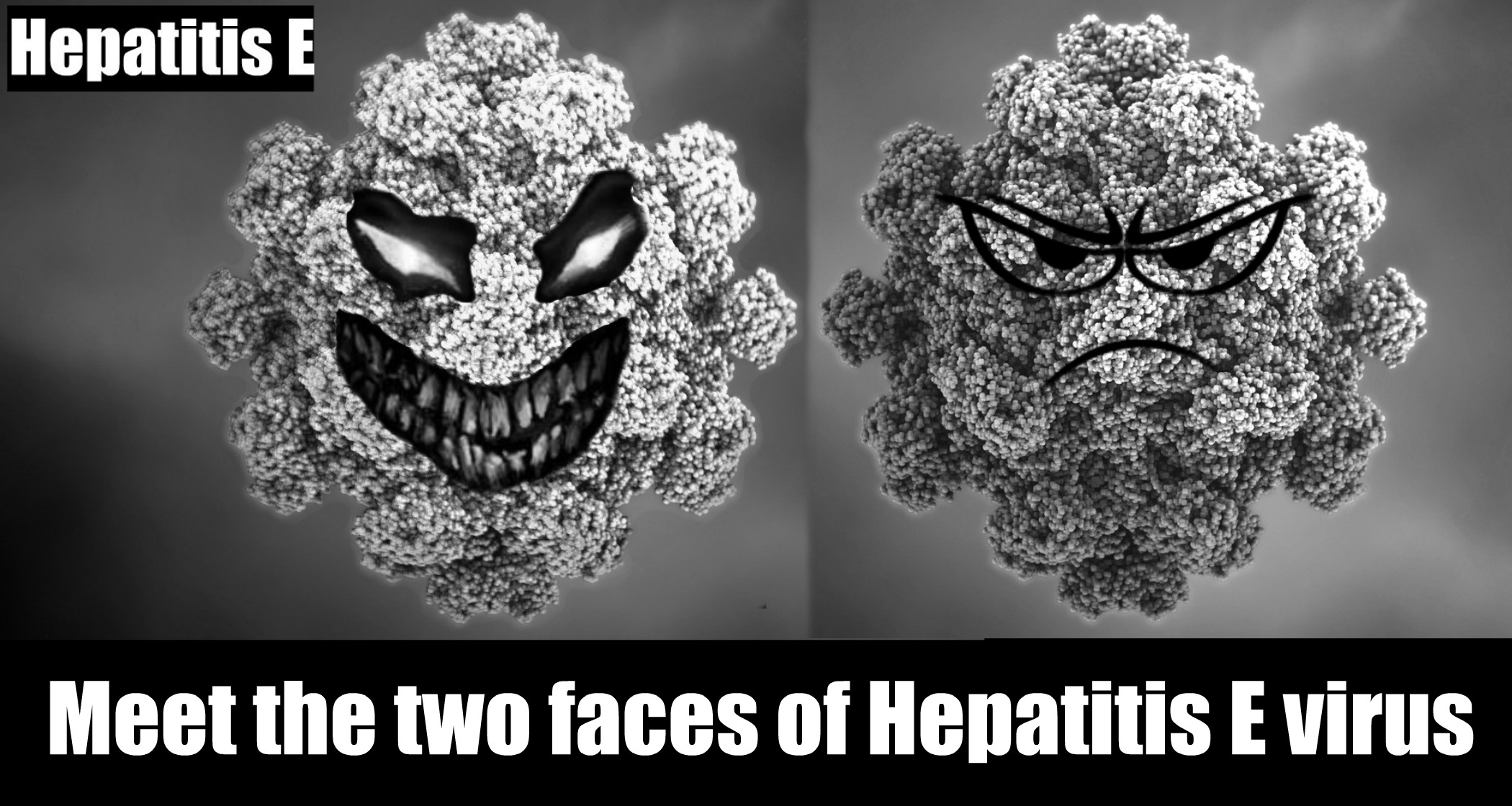 Hep E-the 2 faces