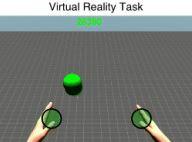 VR task