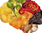 healthy nutrition is good for brain