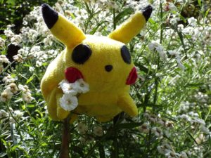 Pokemon Go is a mobile phone app with some unexpected health benefit.